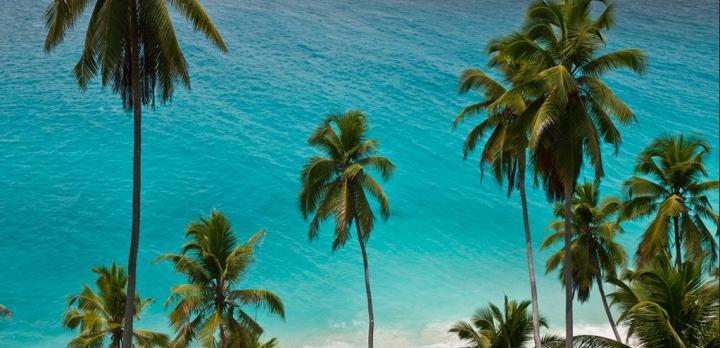 Voyage sur-mesure, Mahé, Praslin, La Digue : Les incontournables