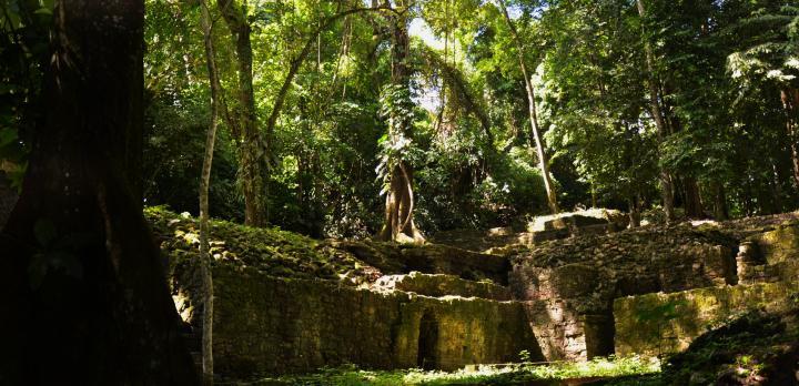 Voyage sur-mesure, Le Yucatan en famille, sites archéologiques et réserves naturelles
