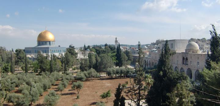 Voyage sur-mesure, La Palestine d'hier et d'aujourd'hui