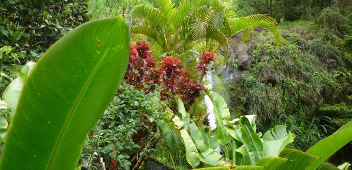 Voyage sur-mesure, I love New York et l'Ile de Grenade Caraïbes