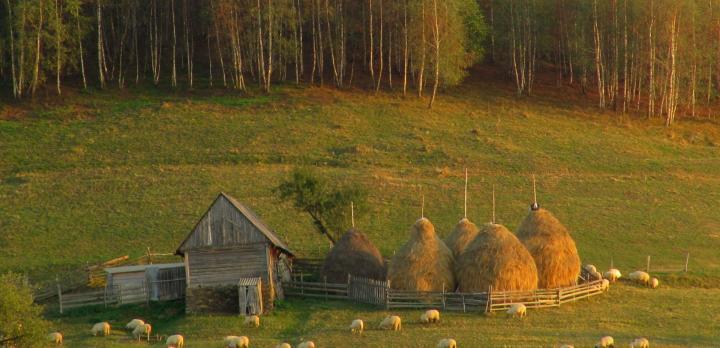Voyage sur-mesure, Autotour en famille à travers la Roumanie