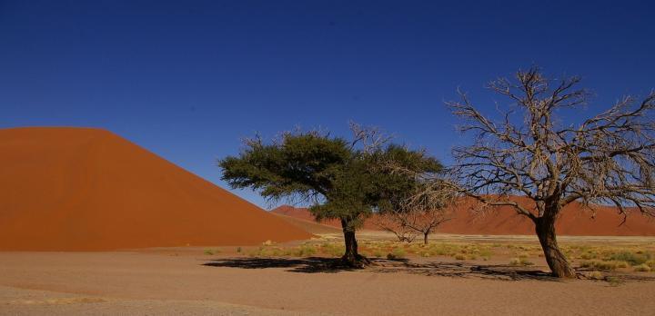 Voyage sur-mesure, Partez à 4 pour un circuit guidé en Namibie !