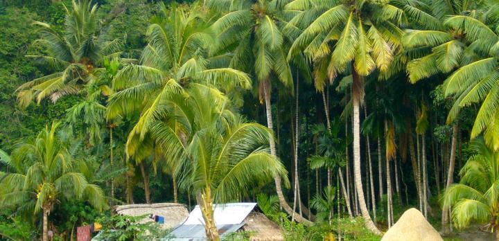 Voyage sur-mesure, Extension balnéaire sur les Iles Andamans