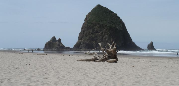 Voyage sur-mesure, Découverte de l'Oregon