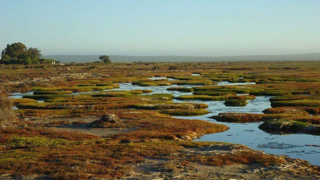 Voyage sur-mesure, Sur les terres du peuple San et dans le parc de West Coast