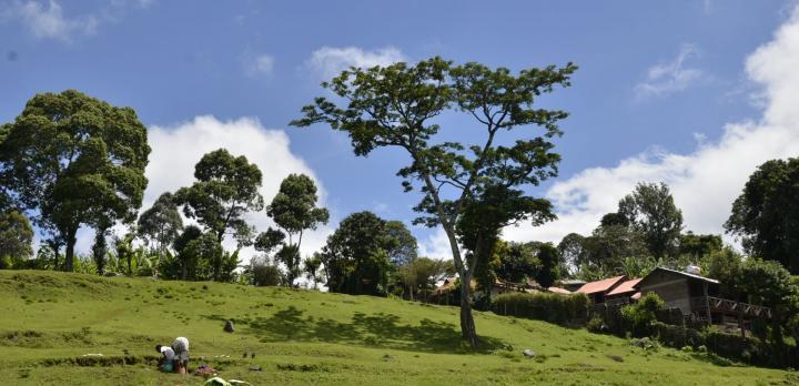 Voyage sur-mesure, Séjour et rencontre authentique sur les pentes du Kilimandjaro
