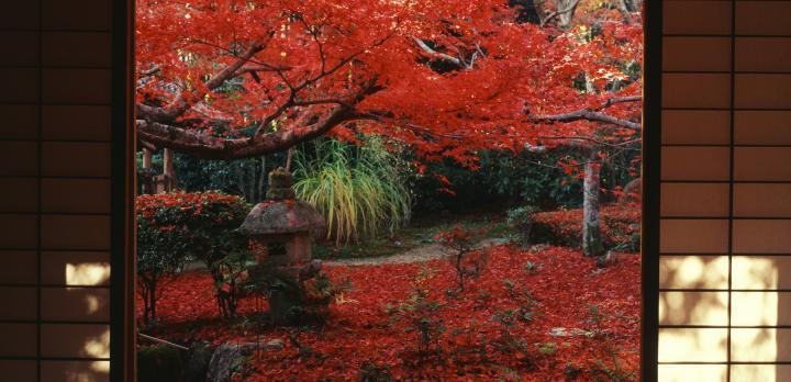 Voyage sur-mesure, Traditions et Randonnée au Japon