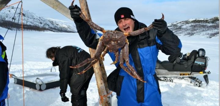 Voyage sur-mesure, Aurores boréales et croisière hivernale dans la Norvège du Nord