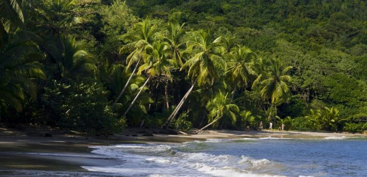 Voyage sur-mesure, Un voyage hors sentiers battus au coeur de la Caraïbe authentique