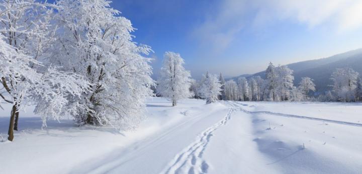Voyage sur-mesure, Au coeur de l'hiver dans le fjord du Saguenay !