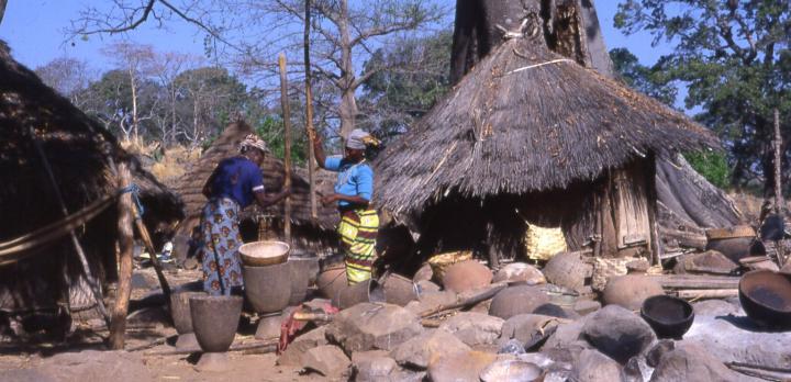 Voyage sur-mesure, Grand tour du Sénégal en deux semaines