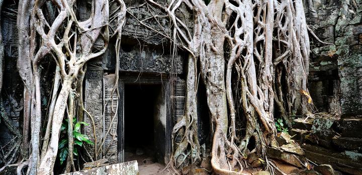 Voyage sur-mesure, Extension culturelle à Angkor