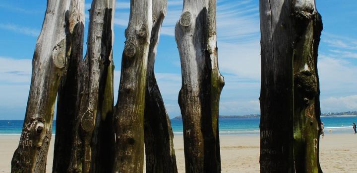 Voyage sur-mesure, Voyage de la Normandie à la Bretagne: LE combiné nature et cultures