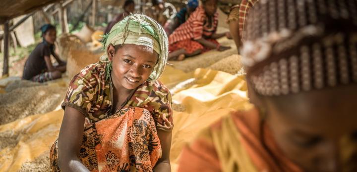 Voyage sur-mesure, Sur les traces du Loup d'Abyssinie, l'Ethiopie en famille