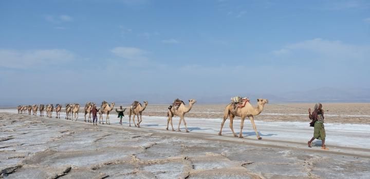 Voyage sur-mesure, Voyage dans les Hauts Plateaux et excursion au Dallol