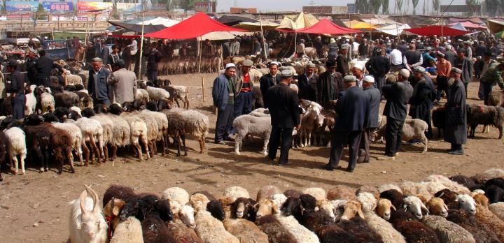 Voyage sur-mesure, Kashgar et le Lac Karakul