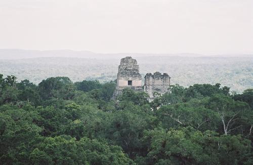 Voyage sur-mesure, Tikal