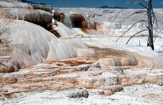 Voyage sur-mesure, Mammoth Hot Springs (Yellowstone North)