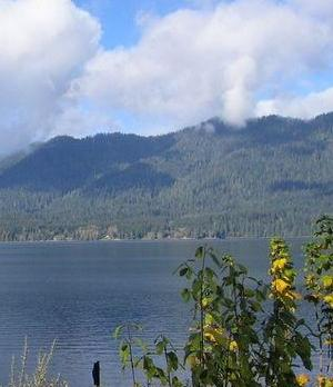 Voyage sur-mesure, Lake Quinault (Olympic National Park)