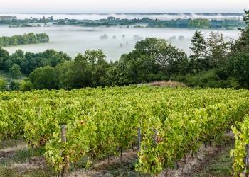 Voyage sur-mesure, Rochefort sur Loire