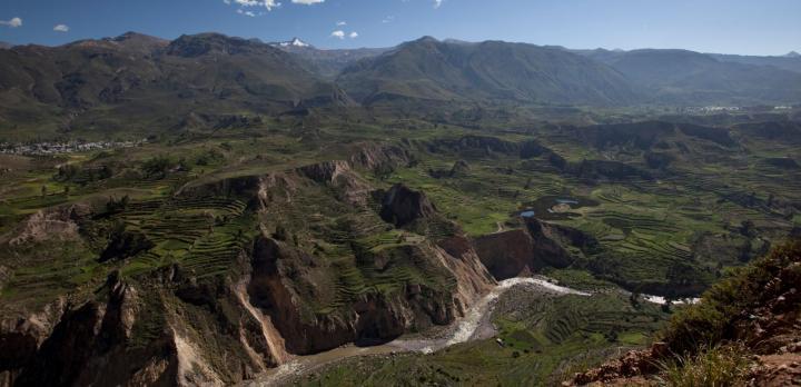 Voyage sur-mesure, Canyon de Colca